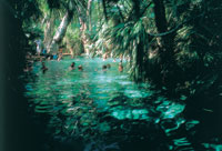Mataranka is famous for its tropical thermal pool and nearby Elsey National Park in Northern Territory